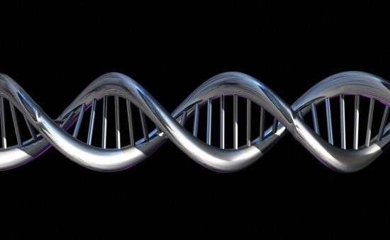 L'ADN contient de nombreuses informations, mais celles-ci prennent davantage de sens lorsqu'on détermine de quelle façon elles sont lues. Or, l'épigénétique interfère avec la transcription génétique. © Spooky Pooka, Wellcome Images, cc by nc nd 2.0
