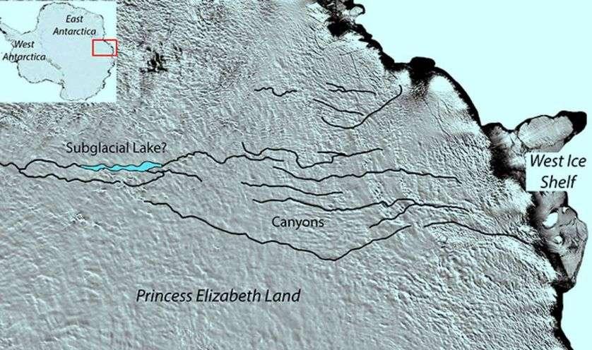 Le réseau de caynons repéré sous l'inlandsis à l'est de l'Antarctique. Il semble relié à un lac sous-glaciaire (subglacial lake ?). © Modis, Newcastle University