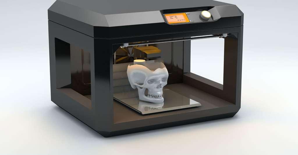 Tête de squelette en 3D. © Denis Ronin, Shutterstock