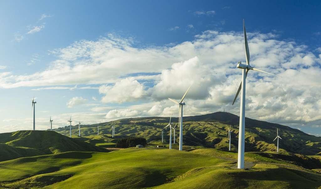 Parc éolien de Te Apiti, situé dans l'île du Nord de la Nouvelle-Zélande. © pespiero, Adobe Stock.