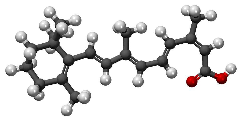L'isotrétinoïne, dont on voit la structure tridimensionnelle, est le principe actif de divers médicaments contre l'acné. Elle a de nombreux effets secondaires, y compris sur le système cardiovasculaire ou le système respiratoire. © MindZiper, DP