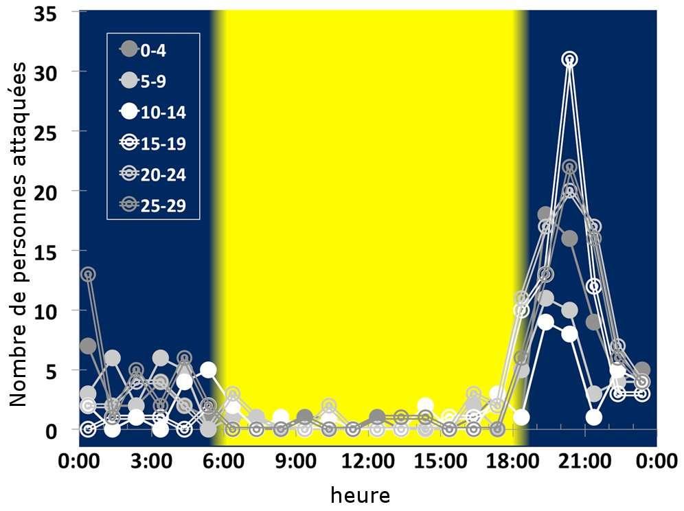 Nombre de personnes attaquées en fonction de l'heure de la journée entre 1988 et 2009. Les différents points correspondent au nombre de jours après la nouvelle lune (la pleine lune est au 14e jour). © Packer et al., 2011