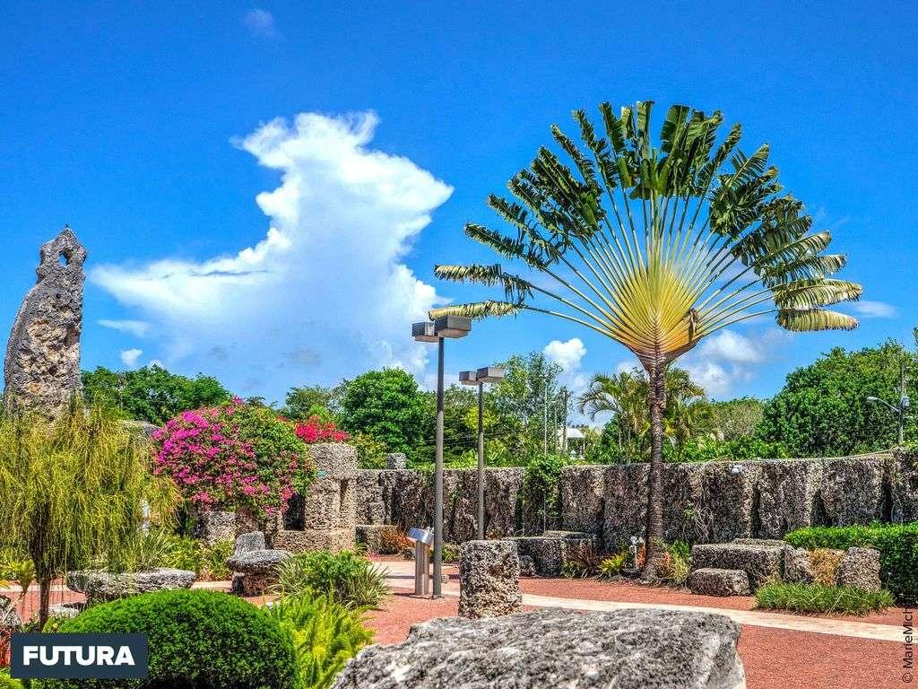 Jardin du Château de corail, Floride