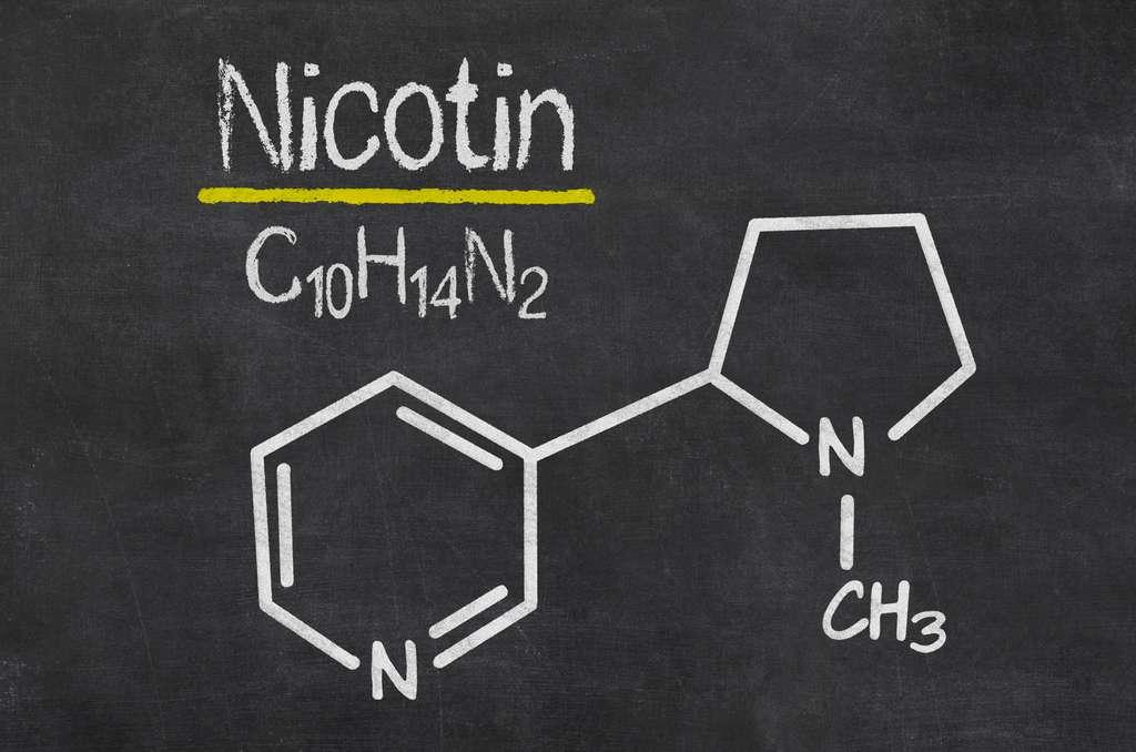 La formule chimique de la Nicotine. © Zerbor, Adobe Stock