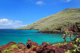 Le grand secret de la biodiversité des îles Galápagos