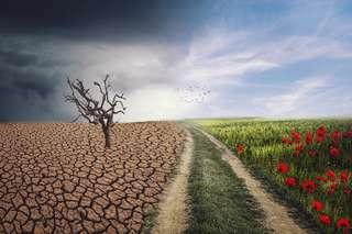 Quels enseignements tirer de la crise du coronavirus pour le changement climatique ? Entretien avec le climatologue Jean Jouzel