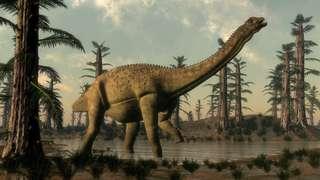 C'est probablement le plus grand animal terrestre de tous les temps