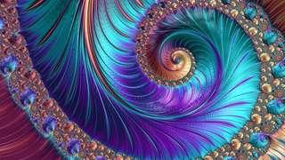 8b30e81545_85864_645-fractal-canonique.jpg