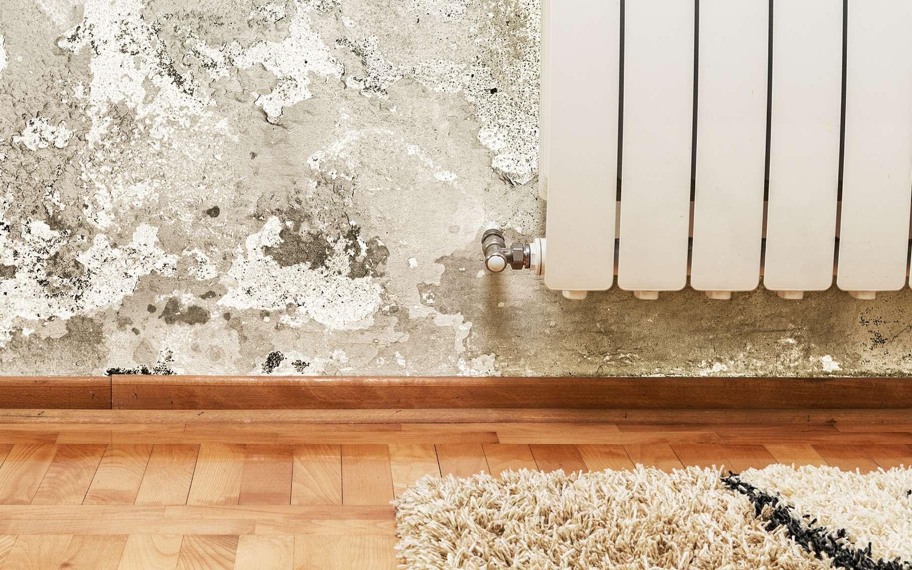 Humidité Dans Une Maison humidité de la maison : lutter contre les remontées