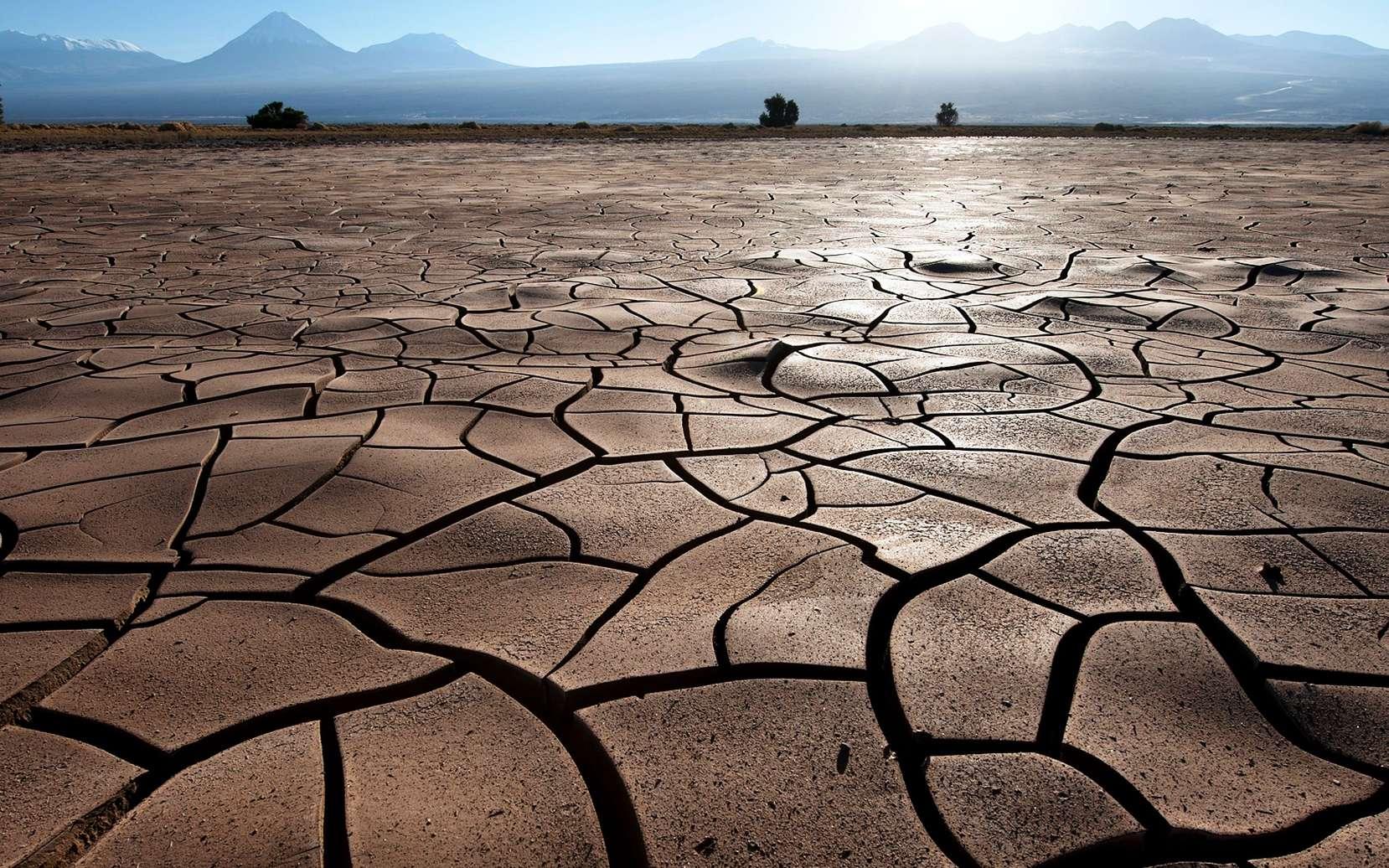 Une région sèche du Chili qui fait penser au climat de l'Éocène. © ESO, Max Alexander