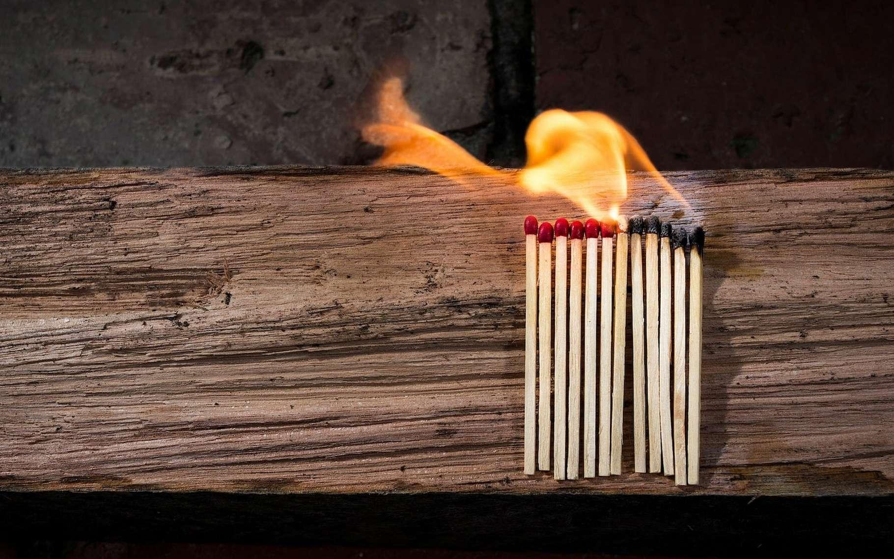 En frottant énergiquement un morceau de bois contre un autre, on peut obtenir du feu. Mais c'est bien plus simple avec l'aide d'une allumette. © raedon, Pixabay License