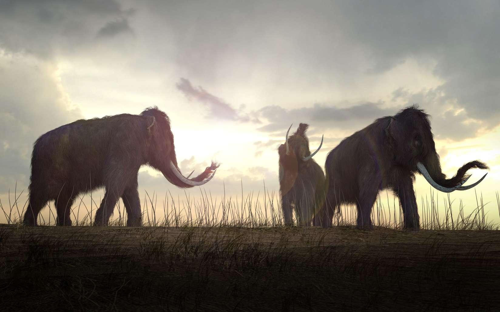Faire revivre les animaux disparus, est-ce vraiment une bonne idée ? © auntspray, Fotolia