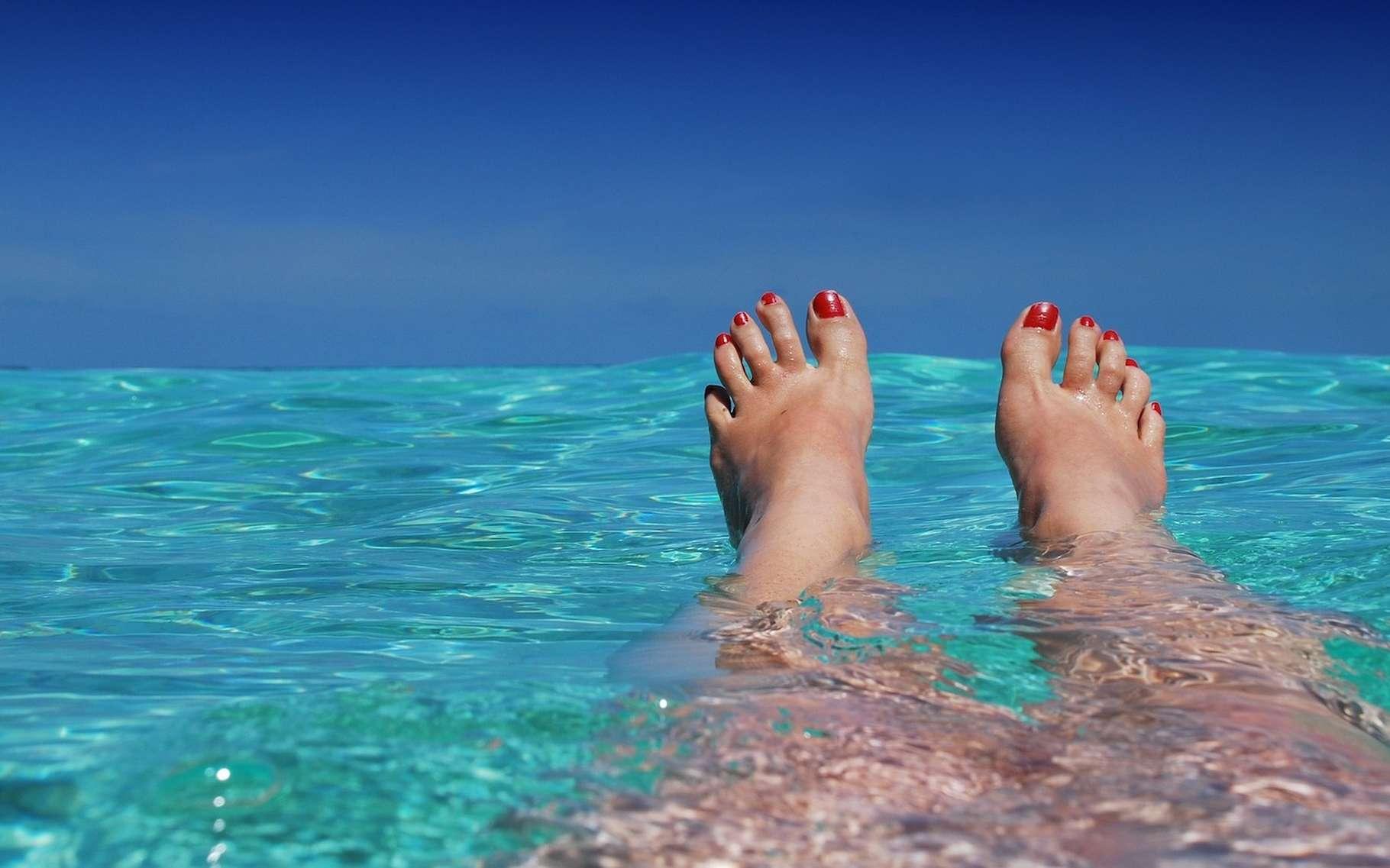 L'été est la plus chaude des quatre saisons des zones tempérées. © romaneau, Pixabay License