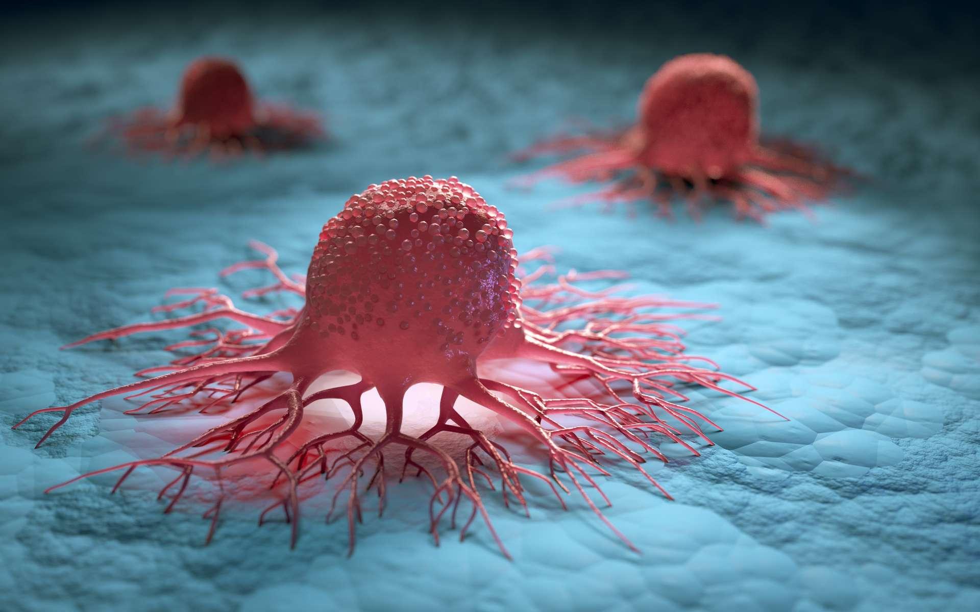 Illustration de cellules cancéreuses isolées. © Peterschreiber.media, Adobe stock