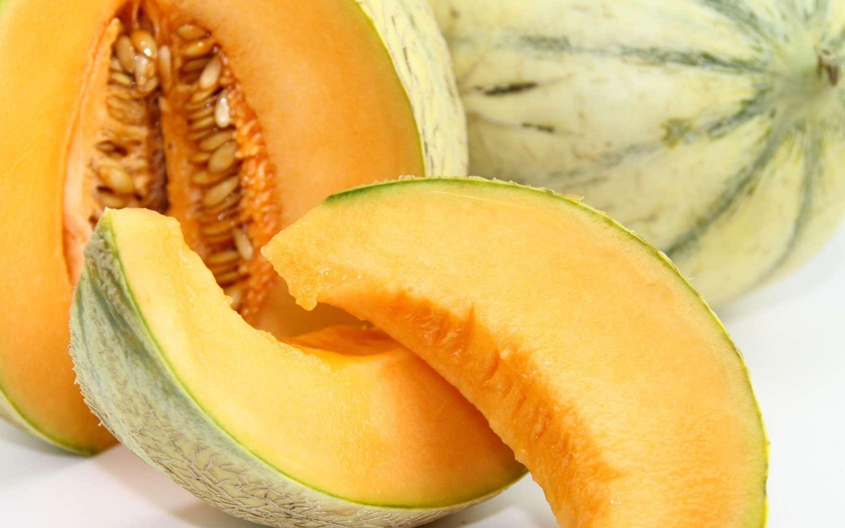 Melon bien mûr : les signes qui ne trompent pas. © papinou, Fotolia