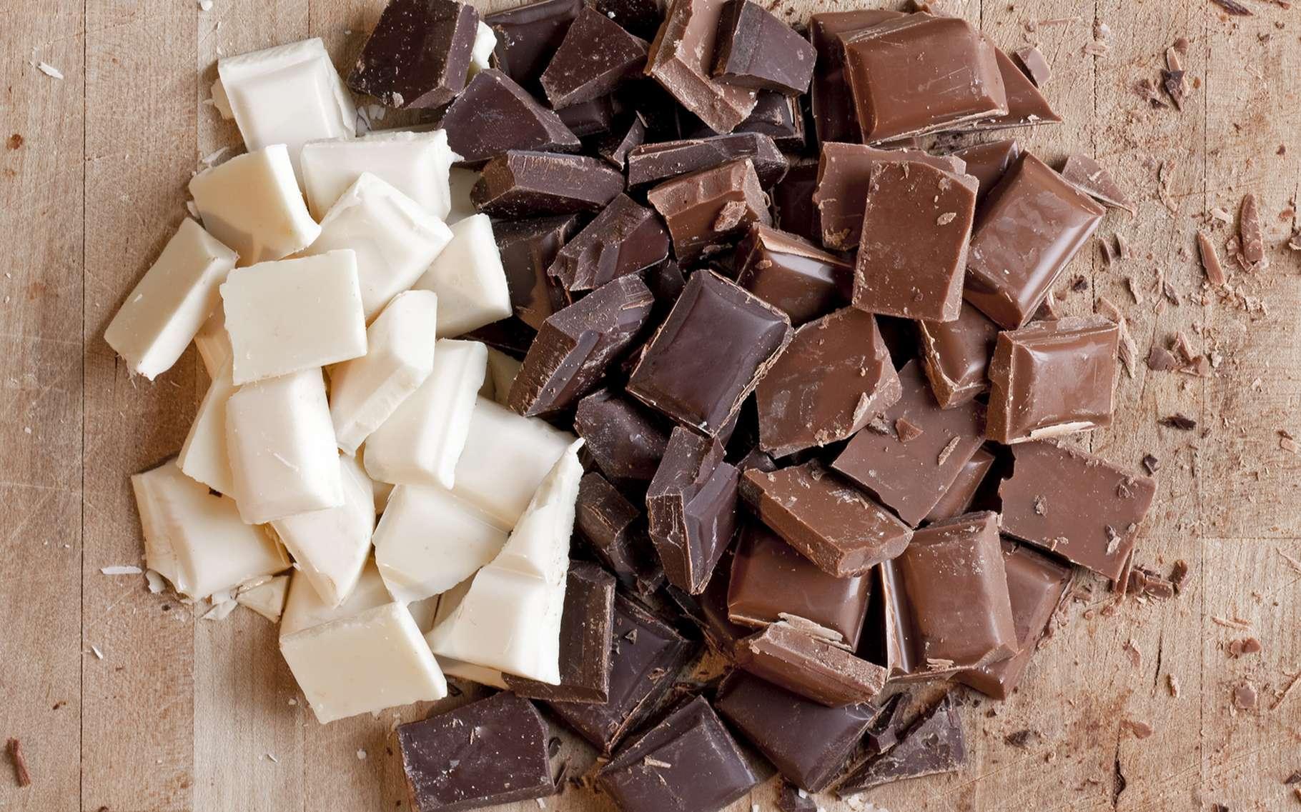 Ce qui fait la différence essentielle entre chocolat noir, au lait et blanc, c'est la teneur en cacao. © J. Helgason, Shutterstock