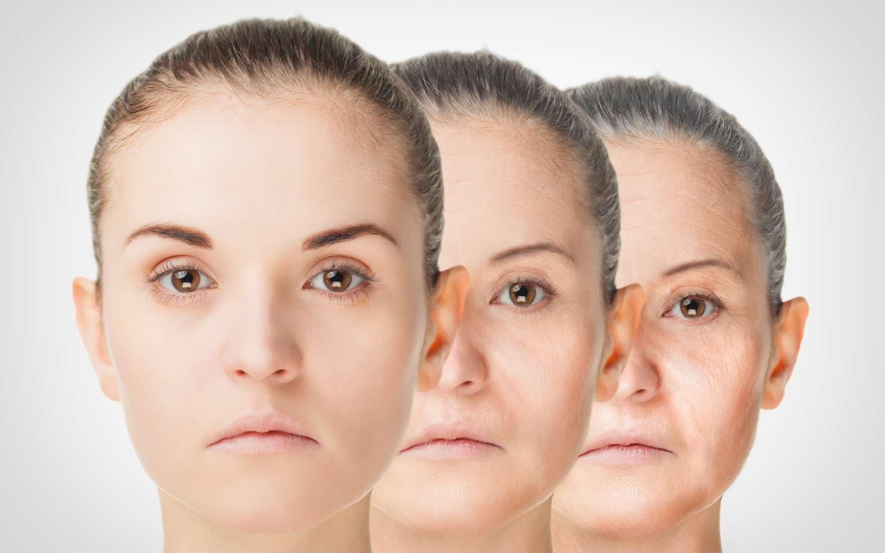 Les radicaux libres sont associés au vieillissement cellulaire. © leszekglasner, Fotolia