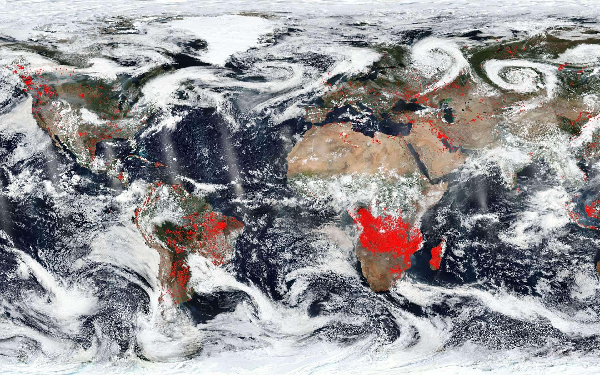 L'Afrique est le continent le plus touché par les incendies, allumés en grande partie volontairement. © Nasa, EOSDIS