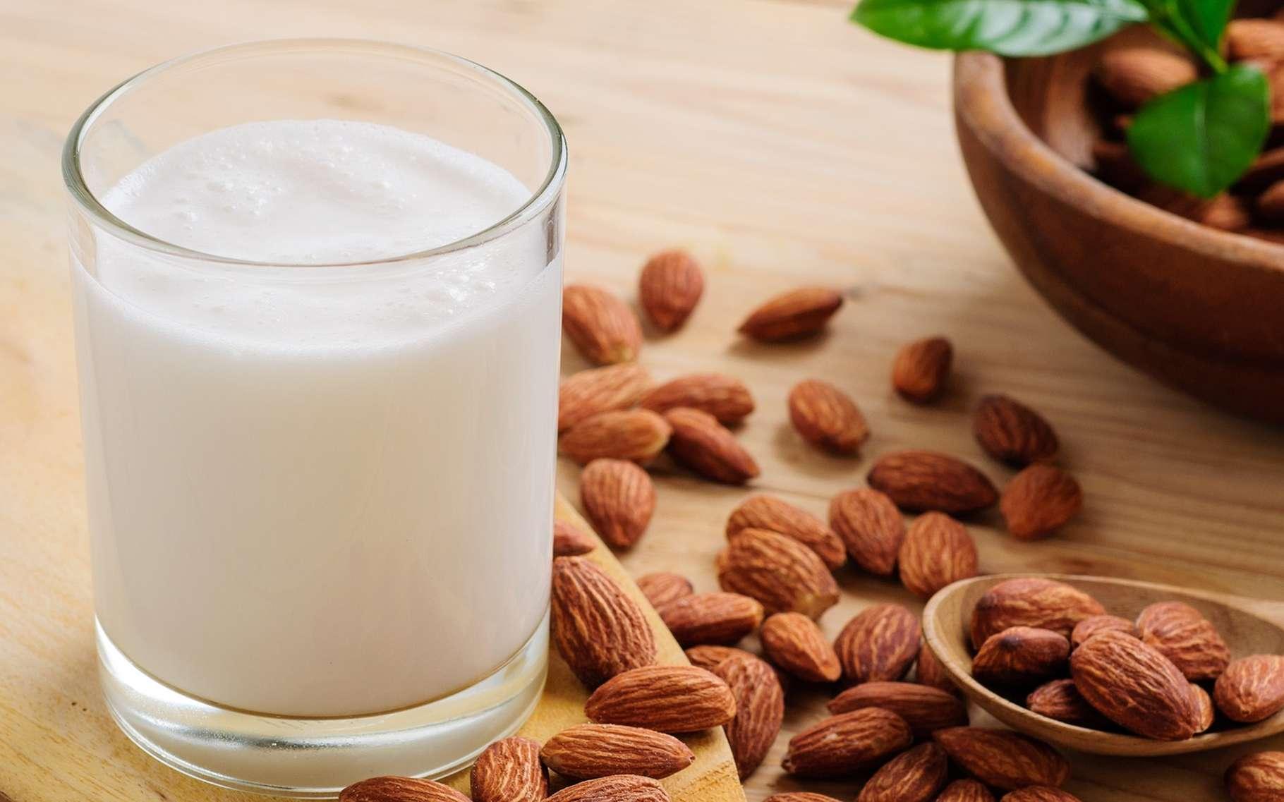 Les laits végétaux peuvent accompagner les céréales du petit-déjeuner, servir à la pâtisserie et aux entremets. © Wichy, Shutterstock