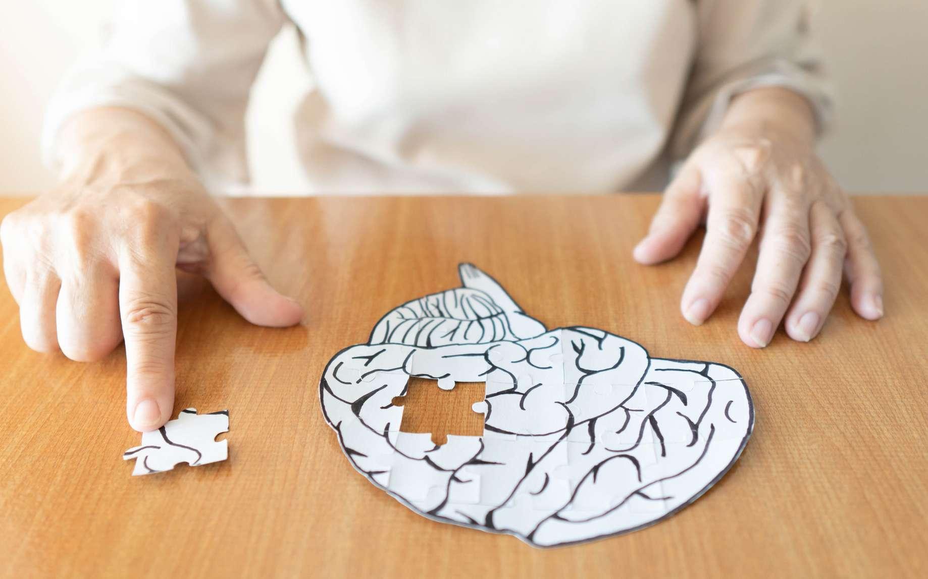 Un cerveau en puzzle. © Orawan, Fotolia