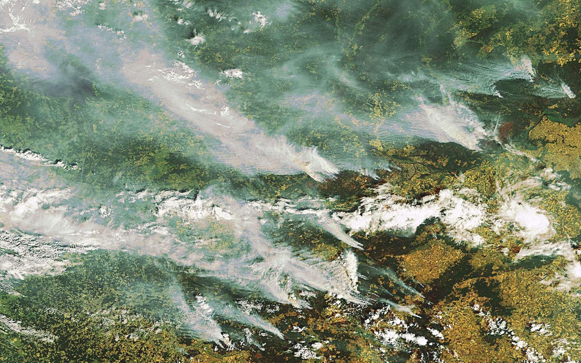 Une image saisie par la caméra Meris (Medium Resolution Imaging Spectrometer) du satellite Envisat le 29 juillet 2010, avec une résolution de 300 mètres. Commentaire de l'Esa : « Plusieurs gros panaches de fumée provenant de feux de tourbe et d'incendies de forêts sont visibles sur cette image prise par Envisat et qui couvre la région à l'est de Moscou. La ville elle-même apparaît dans le coin inférieur gauche de l'image. Les panaches de fumées s'étirent sur plusieurs centaines de kilomètres et, combinés avec la pollution de l'air habituelle de l'agglomération moscovite, ils peuvent entraîner des niveaux de pollution dix fois plus élevés que ceux normalement enregistrés dans la capitale ».