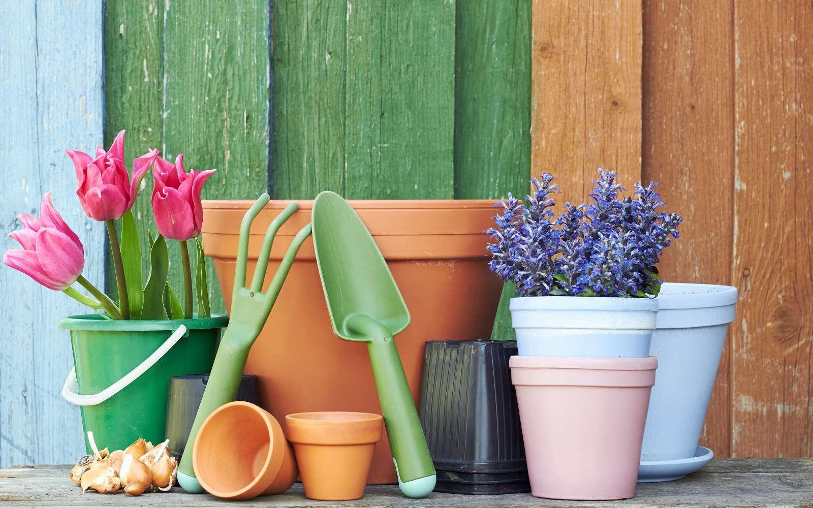 Terre cuite ou plastique, quelle matière choisir pour un pot ou une jardinière ?