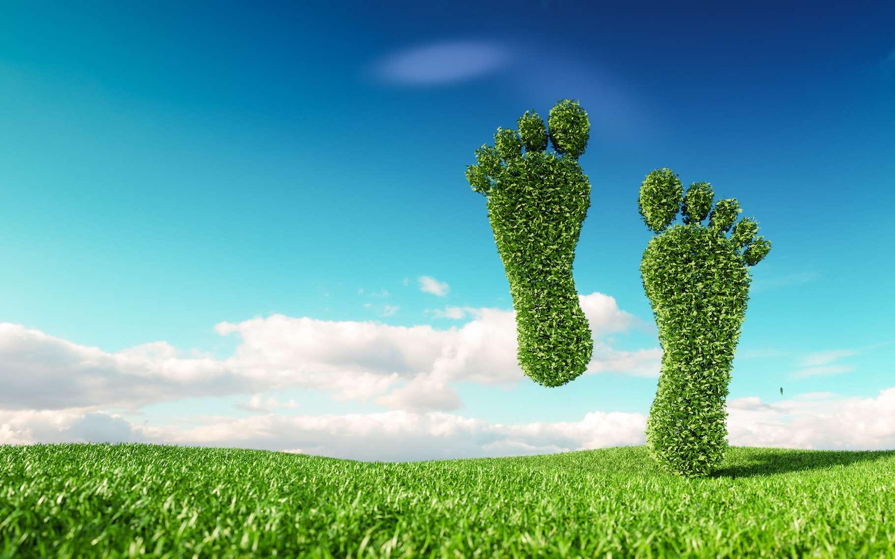 Pour limiter notre empreinte carbone, trois grandes étapes : identifier, réduire et compenser nos émissions de CO2. © malp, Adobe Stock