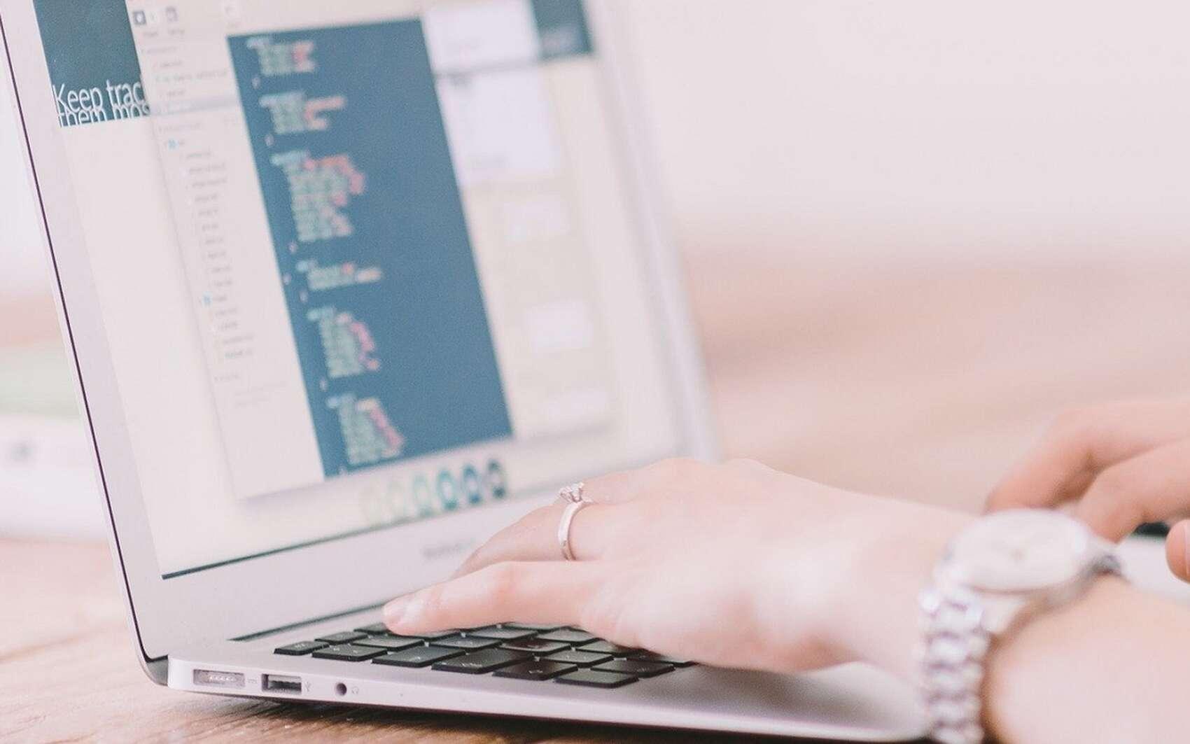 Le code source des logiciels libres est consultable par n'importe qui. Une communauté de développeurs en assure la maintenance et les évolutions. © Pixabay.com