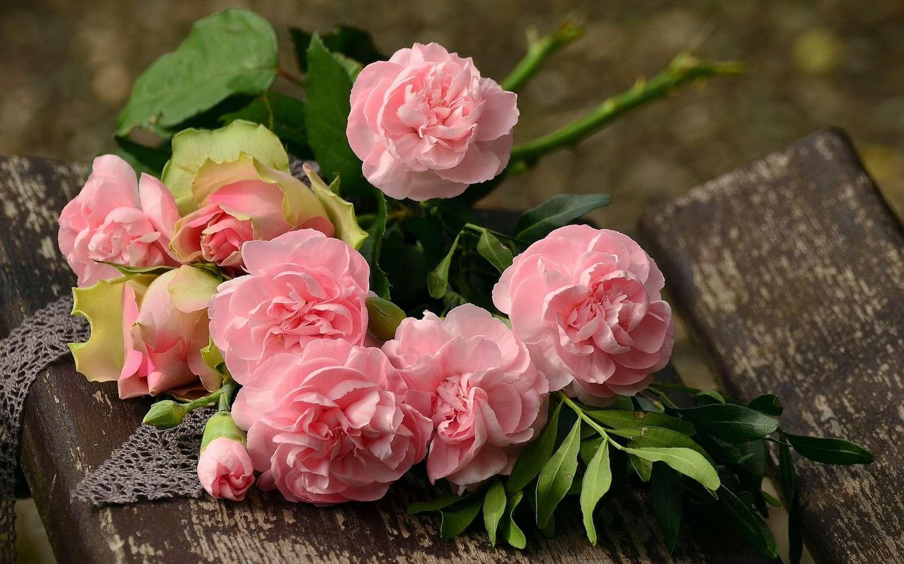 La plupart des femmes sont séduites par un homme qui leur offre des fleurs. La faute au principe du handicap? © congerdesign, Pixabay, CC0 Creative Commons