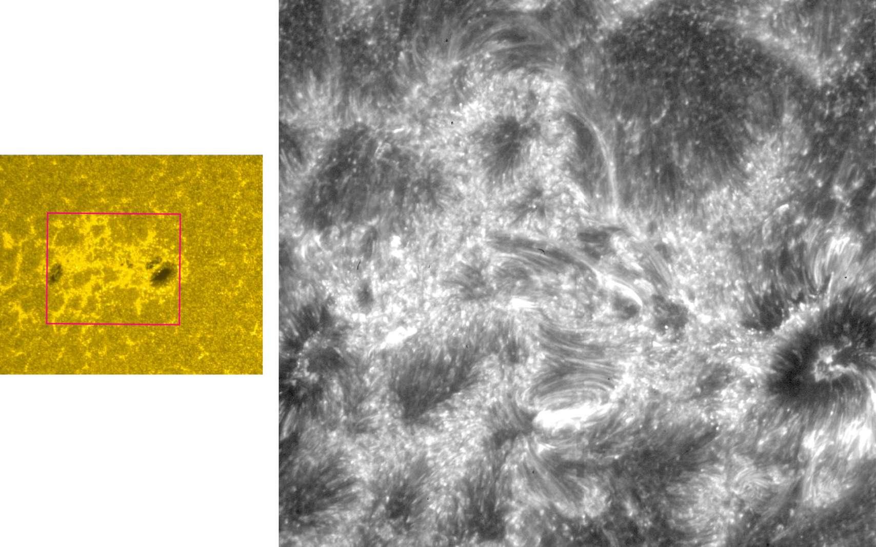Seulement quelques jours après l'ouverture de son télescope, le satellite Iris a photographié avec un niveau de précision inédit l'activité du Soleil dans la basse atmosphère. © Nasa