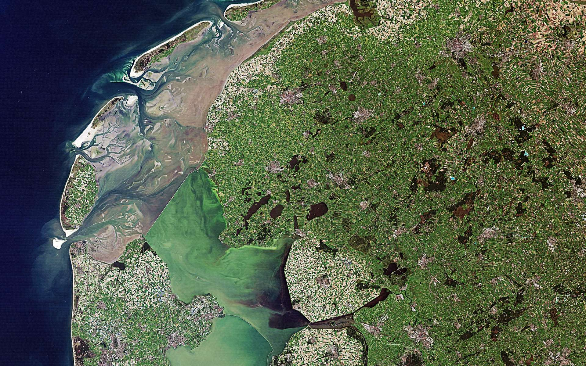 Cette image réalisée par Landsat le 6 septembre 2010 montre les polders des Pays-Bas. © USGS/Esa