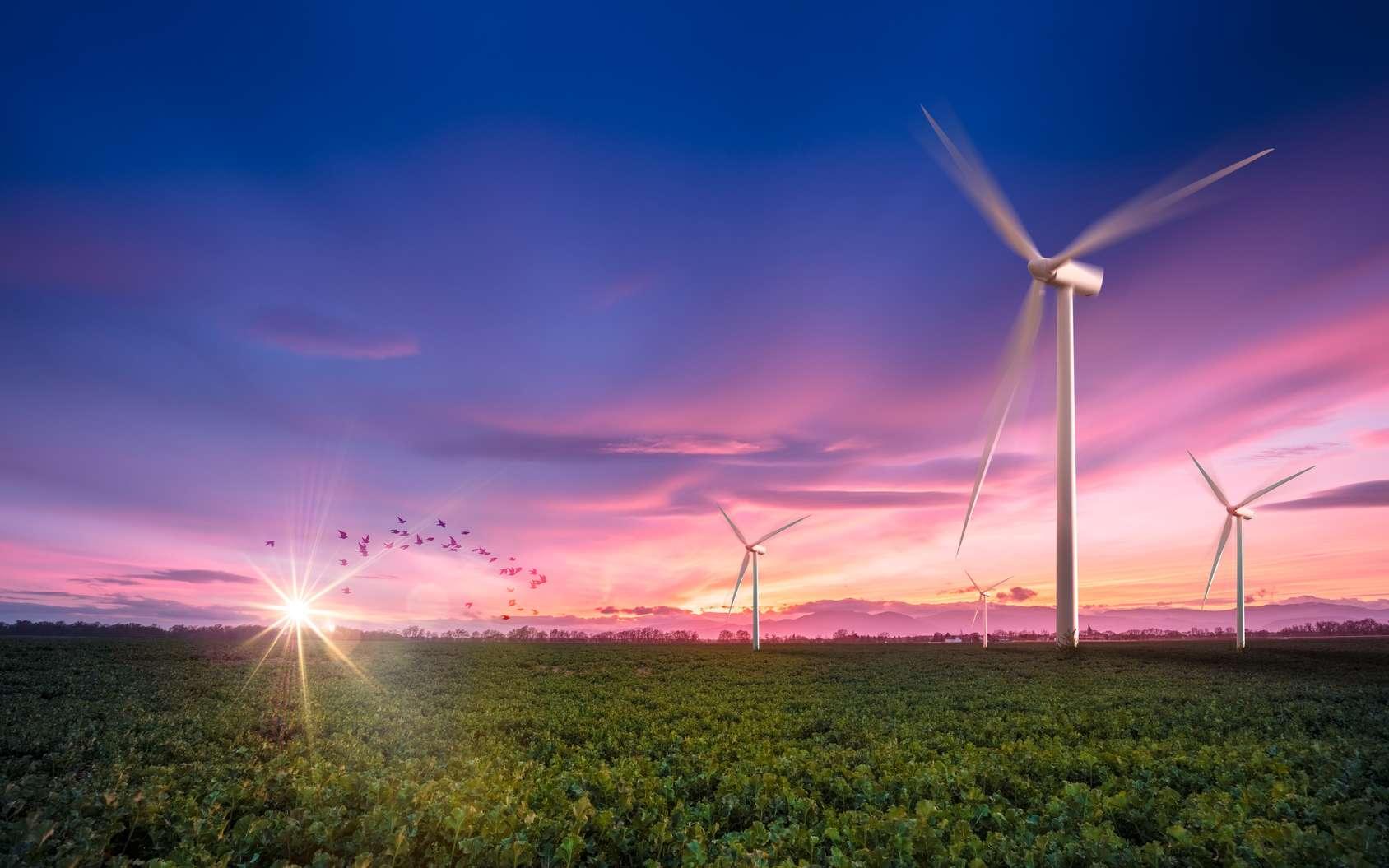 Il existe différents types d'éoliennes. Ici, des éoliennes conventionnelles, à axe horizontal. © Chlorophylle, Fotolia