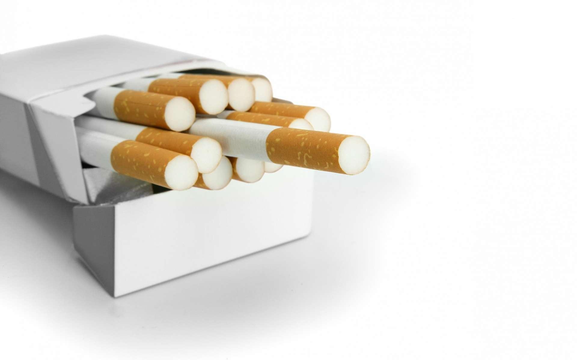 La valériane apaiserait l'irritabilité liée au sevrage tabagique et réduirait le stress. © Phovoir