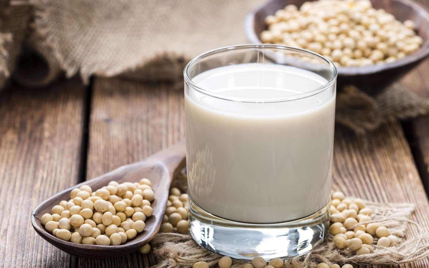 Le lait de soja est un lait végétal. Il peut se substituer au lait de vache dans les crêpes, gâteaux, ou servir à accompagner un bol de céréales. © HandmadePictures, Fotolia