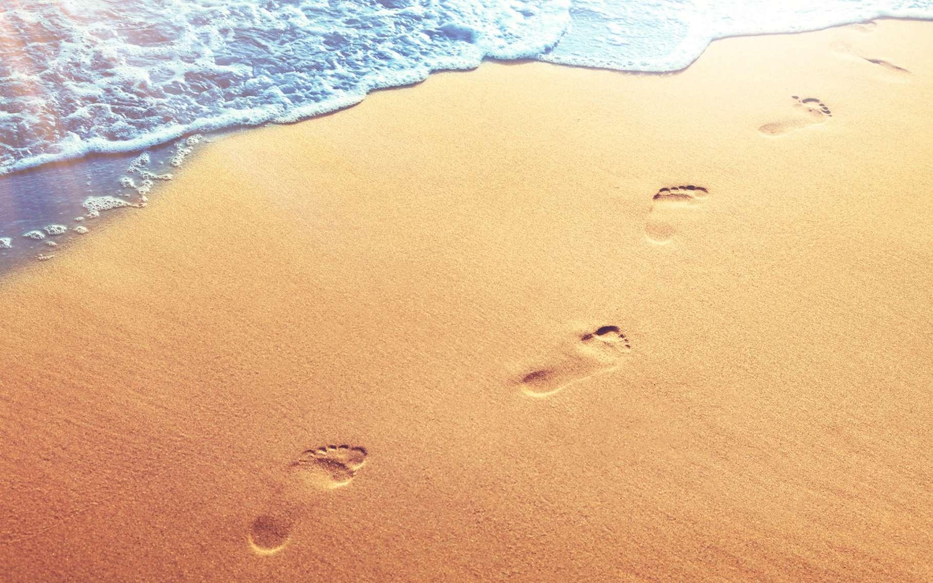 C'est sur une plage de l'île Calvert (Canada) que des empreintes de pas humains datant de quelque 13.000 ans ont été découvertes. © Thaut Images, Fotolia