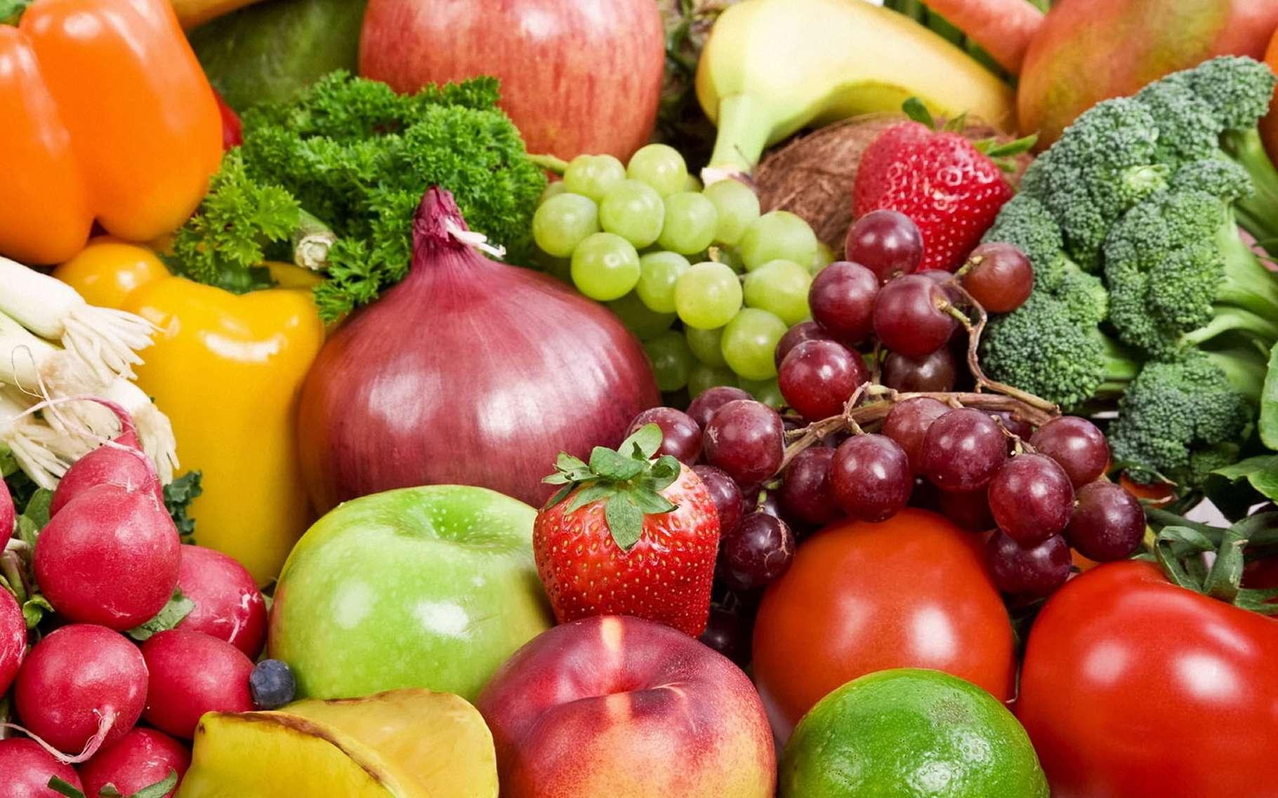 Le végétarisme est une pratique alimentaire qui exclut la consommation de chair animale. © Michael Stern, Wikimedia commons, CC 2.0