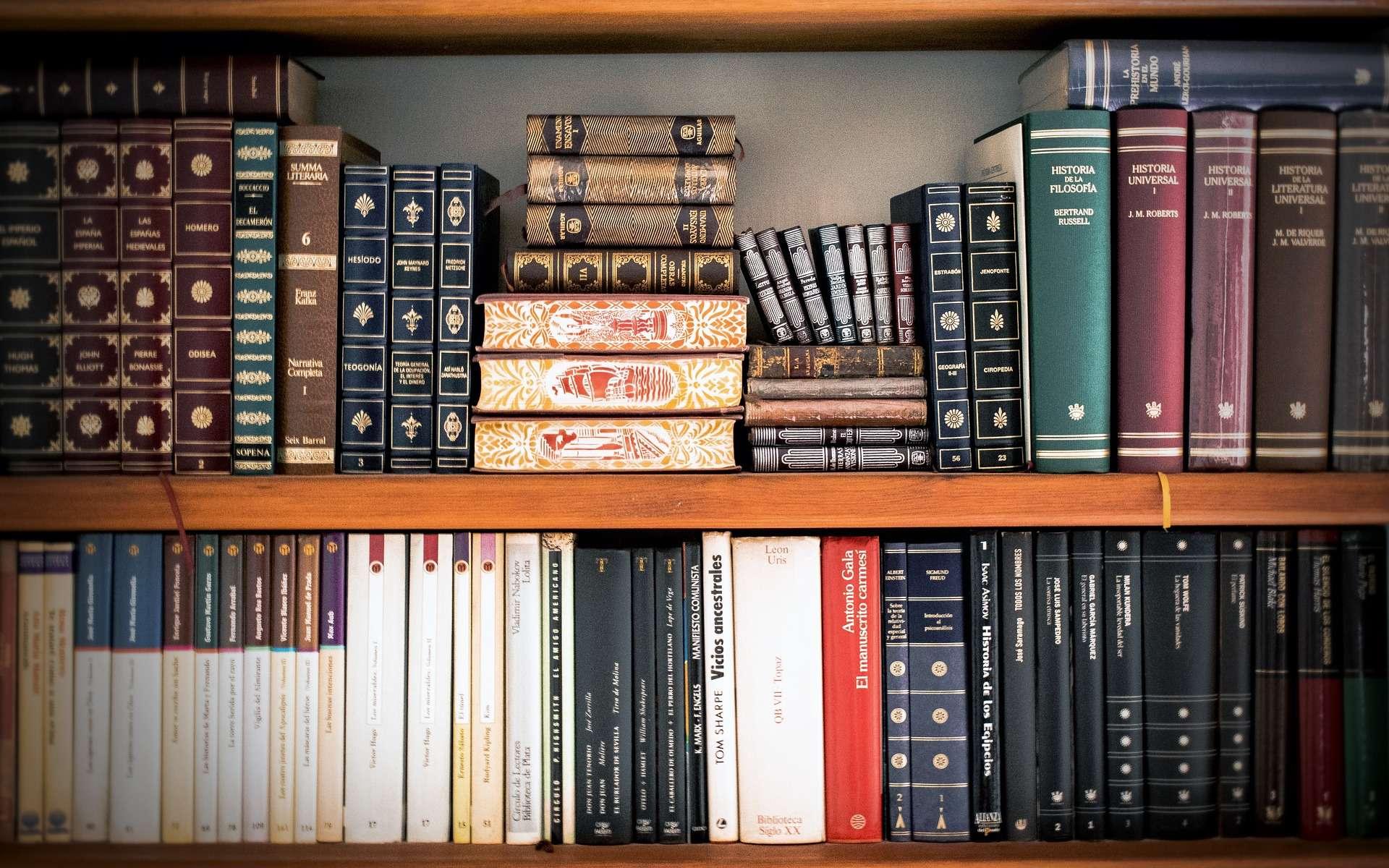 Fabriquer des étagères sur mesure peut permettre de poser des livres de différentes tailles. © PactoVisual, Pixabay, DP