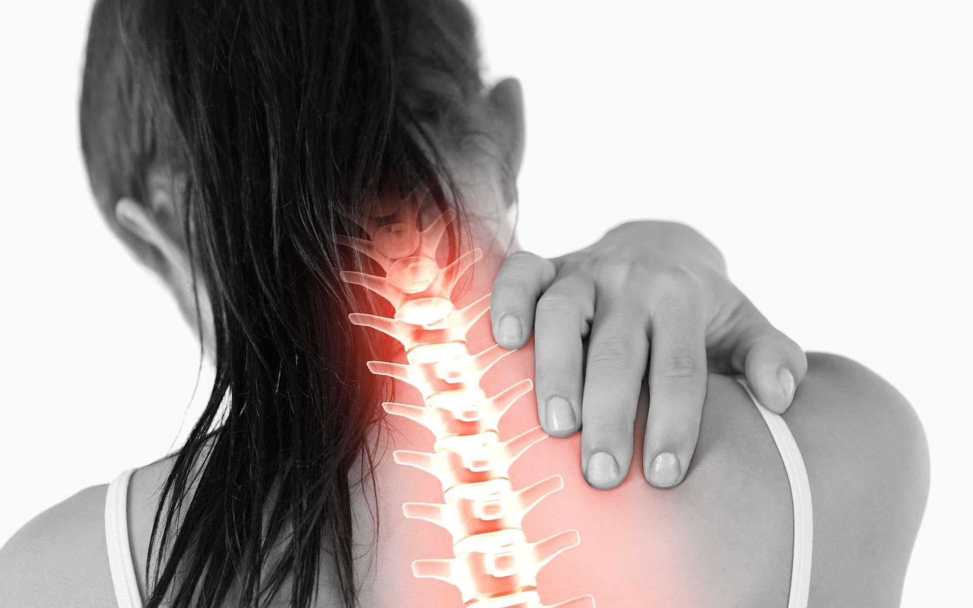 L'arthrose cervicale est une usure prématurée du cartilage des vertèbres du cou. © WavebreakMediaMicro, Adobe Stock