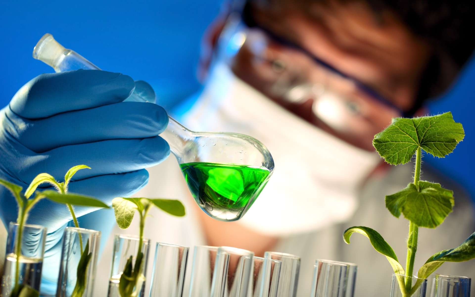 Découvrir le métier d'ingénieur en biotechnologies. © Lily, Adobe Stock