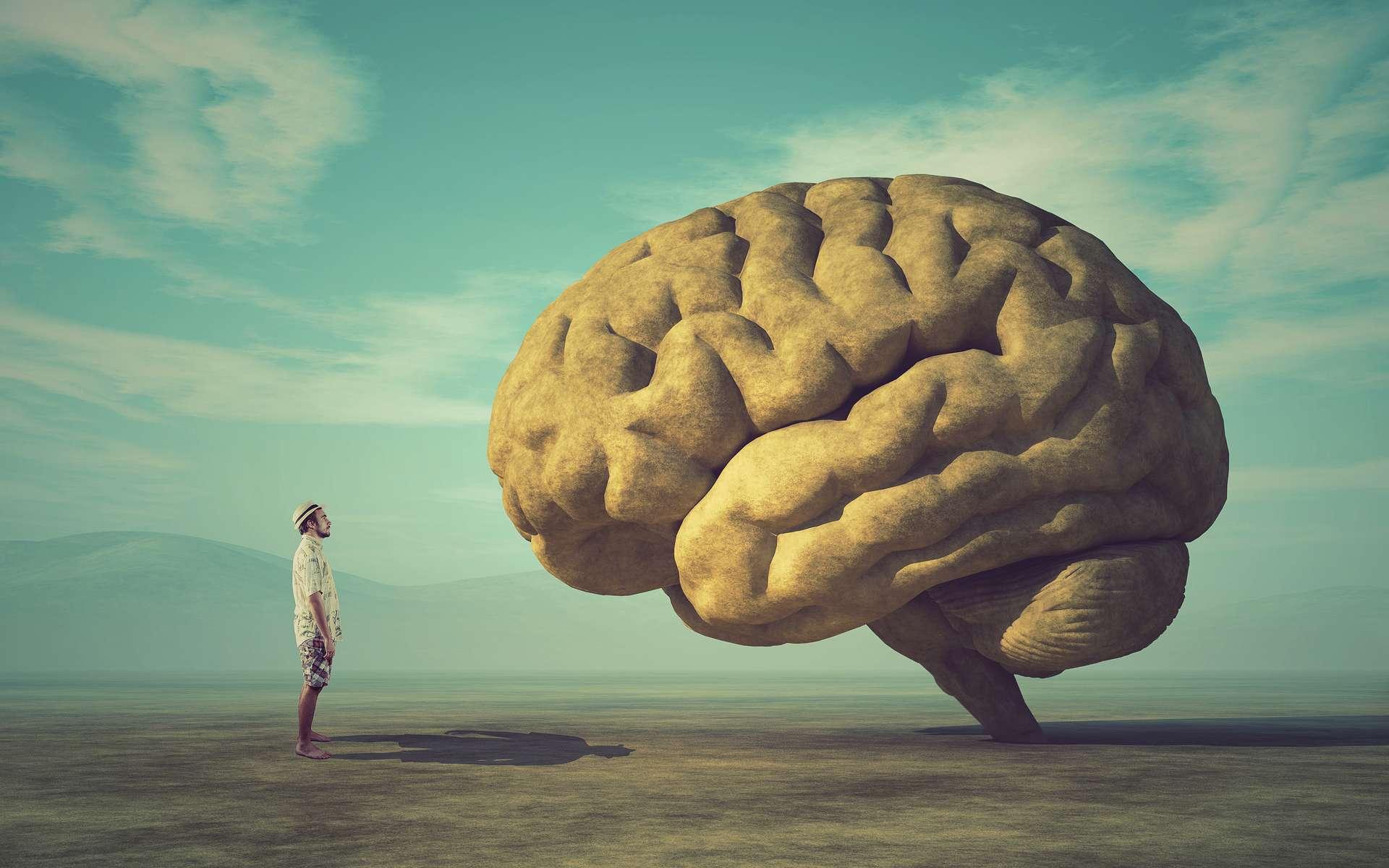 En stimulant des zones spécifiques de votre cerveau, on peut vous faire ressentir certaines choses. © Orlando Florin Rosu, Adobe Stock