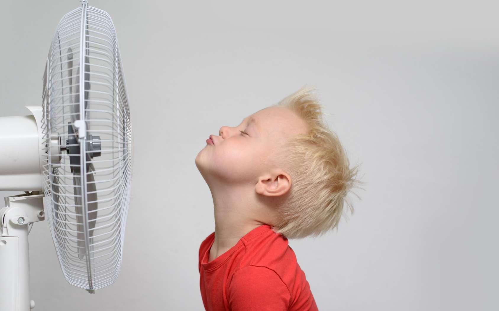 Même un simple ventilateur peut s'avérer très efficace pour se rafraichir l'été. © somemeans, Fotolia