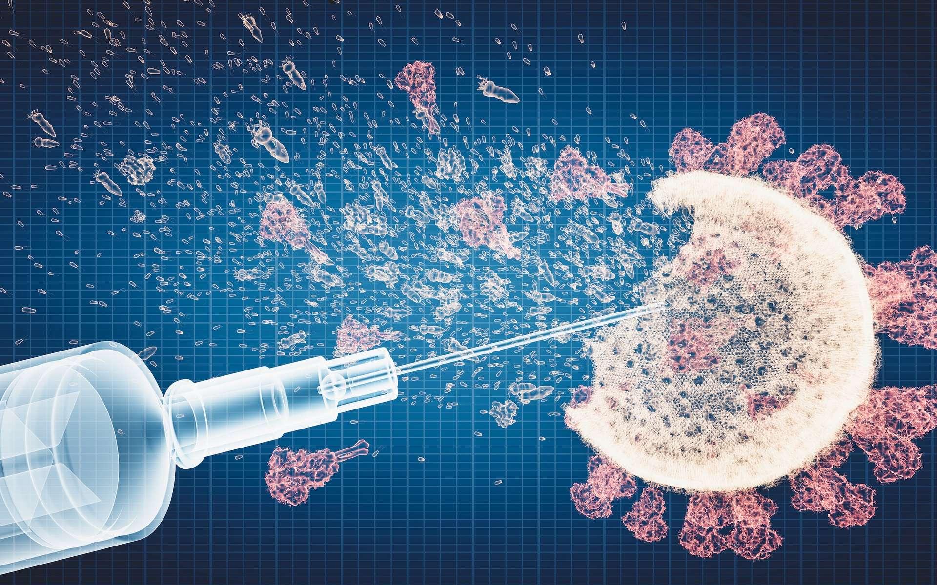 Des chercheurs de l'université de Singapour ont découvert des anticorps neutralisants particulièrement efficaces chez des personnes qui avaient survécu à SRAS de 2003 puis ont été vaccinées contre le SARS-CoV-2. Ils espèrent pouvoir ainsi développer un vaccin de troisième génération qui aiderait à lutter contre tous les variants. © Photocreo Bednarek, Adobe Stock
