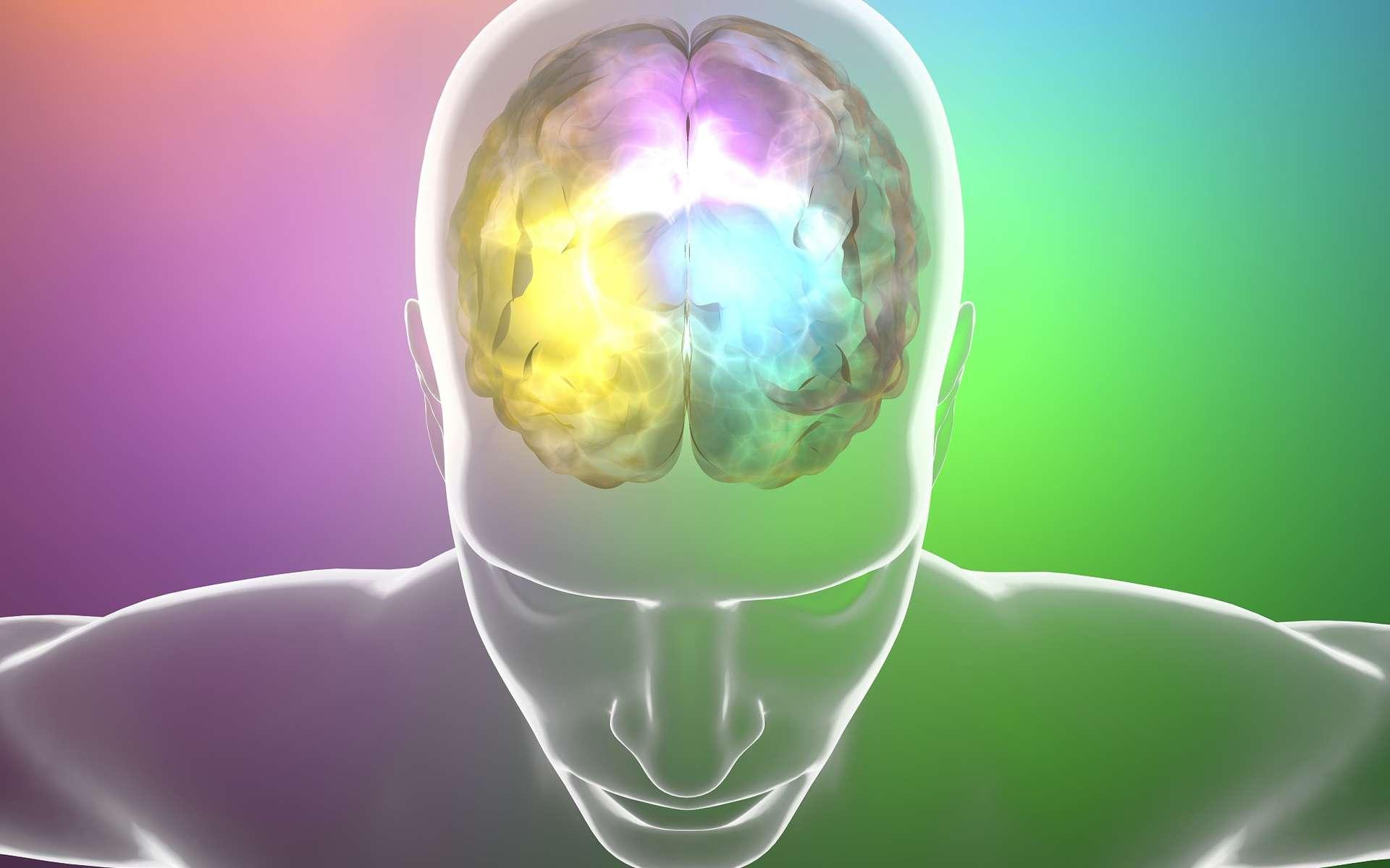 Les chercheurs ont fait un grand pas en utilisant une matrice 3D pour obtenir des neurones à partir de cellules souches. Les cellules injectées dans le cerveau de souris survivent bien mieux qu'avec d'autres méthodes. © Naeblys, Shutterstock