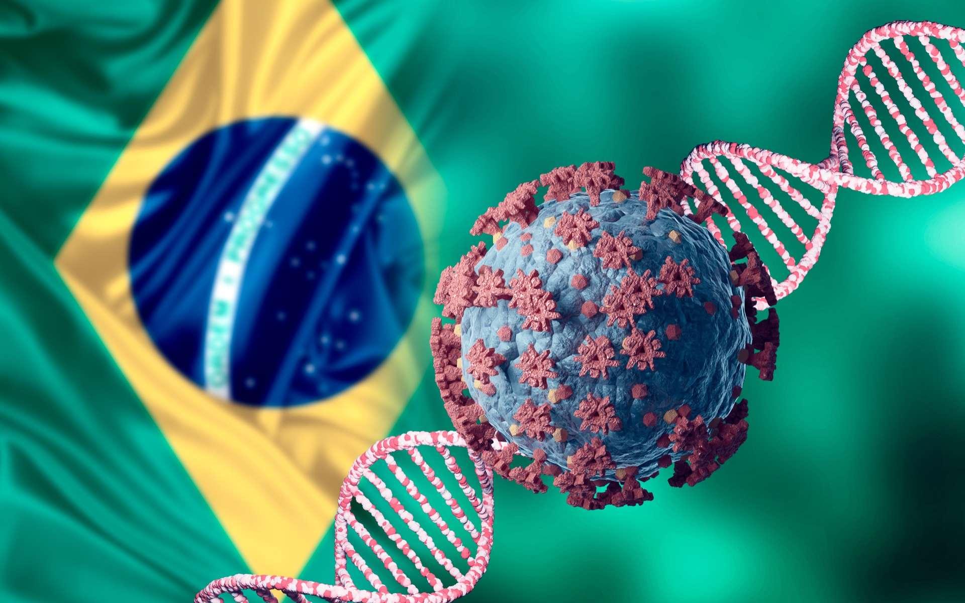 Variant brésilien : le virus qui met en alerte les autorités sanitaires. © AGPhotography, Adobe Stock