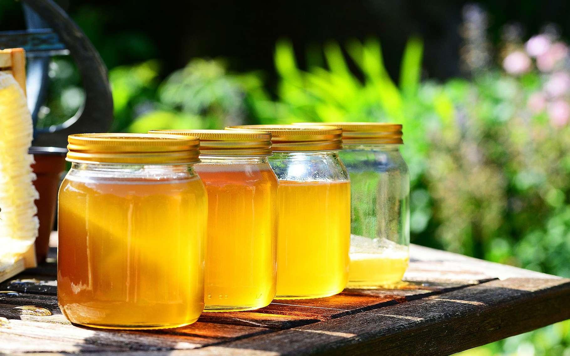 Accueillir des abeilles chez soi, c'est possible... © DR