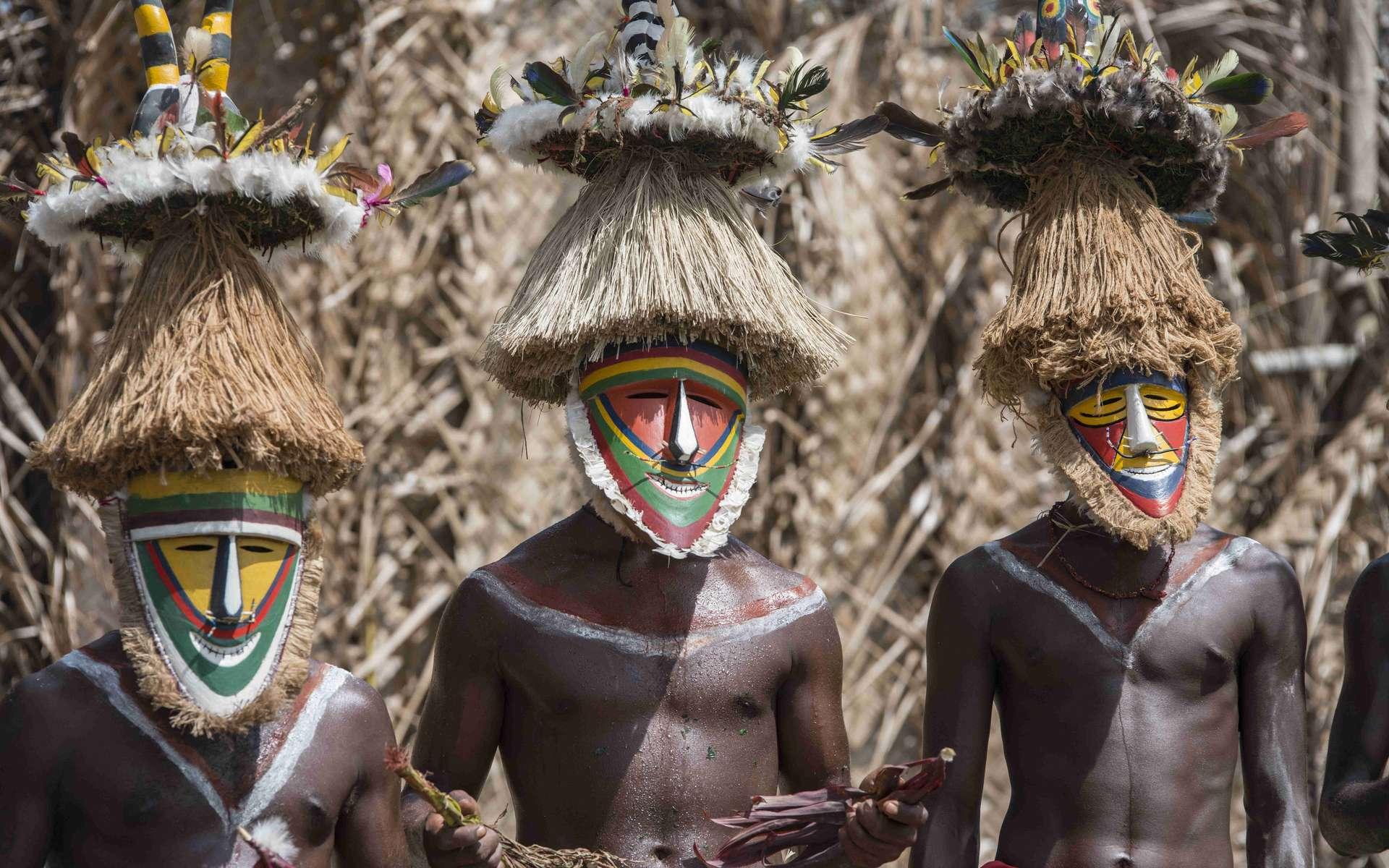 Des populations de Papous vivent à haute altitude depuis 20.000 ans. © Ron van der Stappen, Adobe Stock