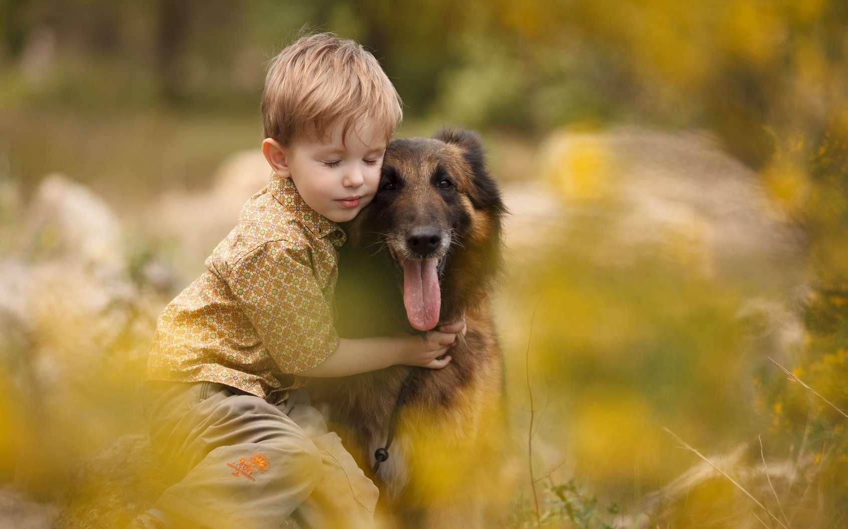 Le chien est formé à la surveillance d'un enfant diabétique. © serova_ekaterina, Fotolia