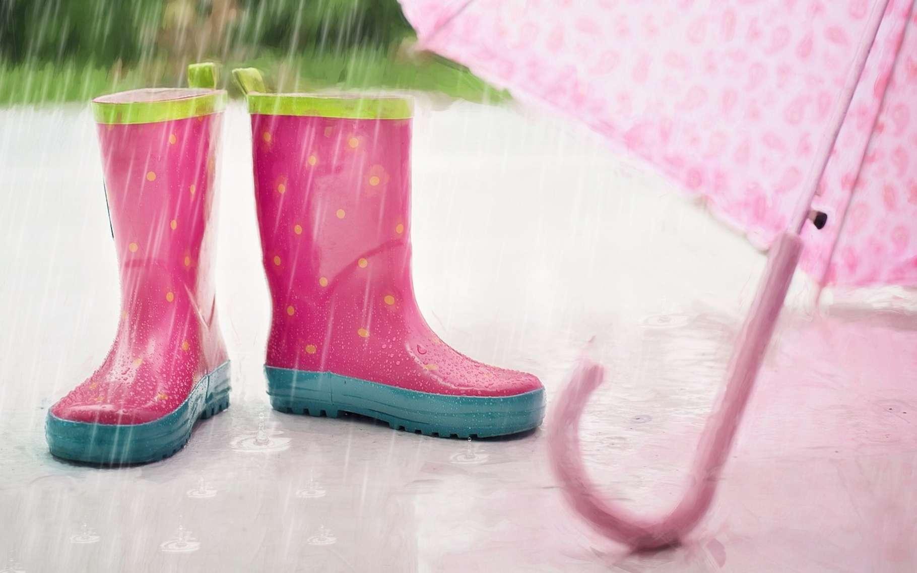 Un pluviomètre sert à mesurer la quantité de précipitations tombée sur une surface donnée. © jill111, Pixabay, DP