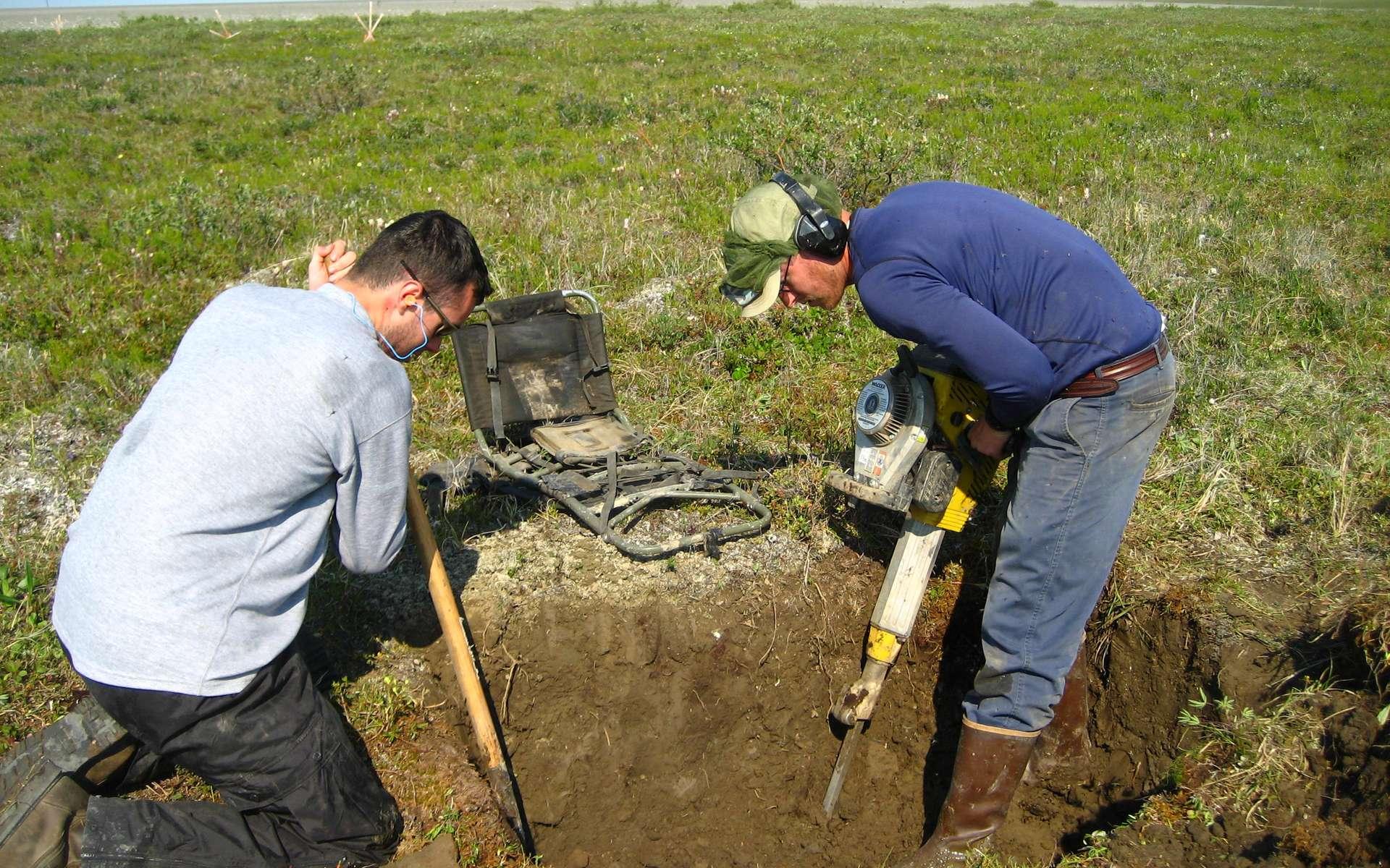 L'augmentation de la fonte des glaces génère des thermokarsts, des zones où le pergélisol est dégradé. Le pergélisol est un sous-sol gelé en permanence. À l'image, les chercheurs creusent au marteau-piqueur pour étudier le pergélisol d'Alaska. © Nick Bonzey, Flickr, cc by sa 2.0