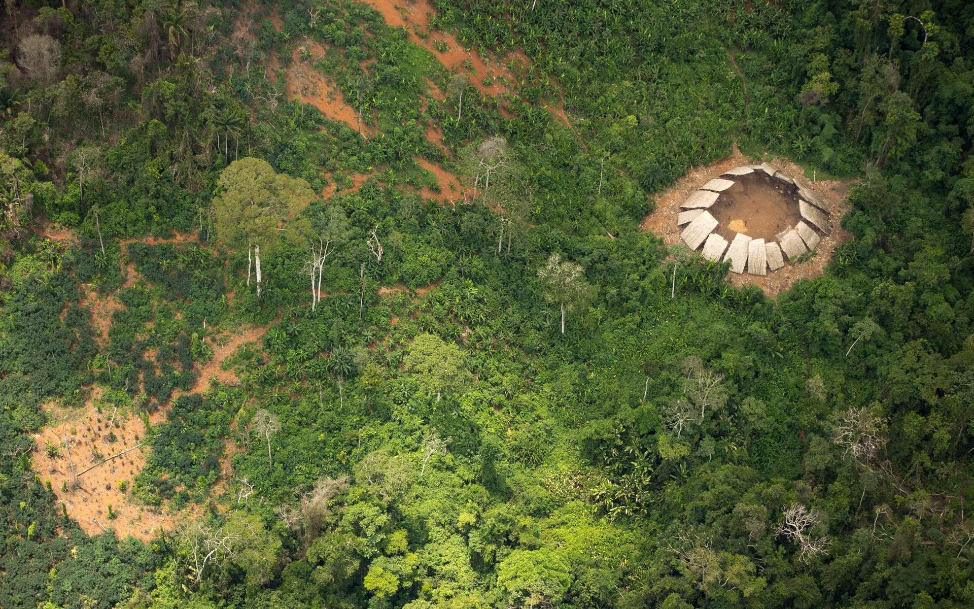 Vue aérienne de la structure circulaire où vivent les Moxihatetema, dans la réserve Yanomami au nord du Brésil. © Guilherme Gnipper Trevisan, Hutukara, Survival